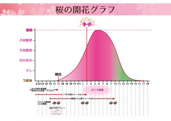 さくらグラフ